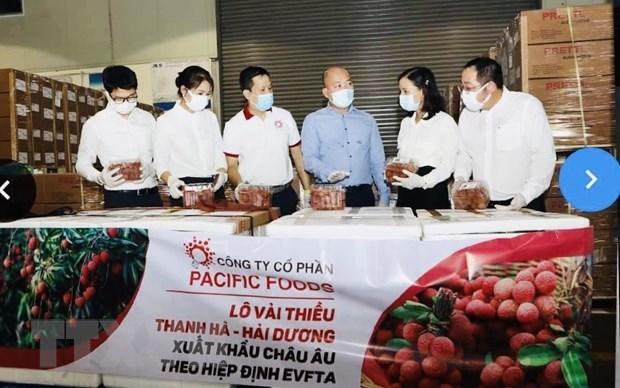 Vietnamese lychees head for EU markets hinh anh 1