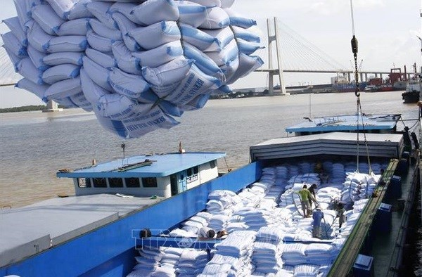Vietnamese firms win bids for rice exports hinh anh 1