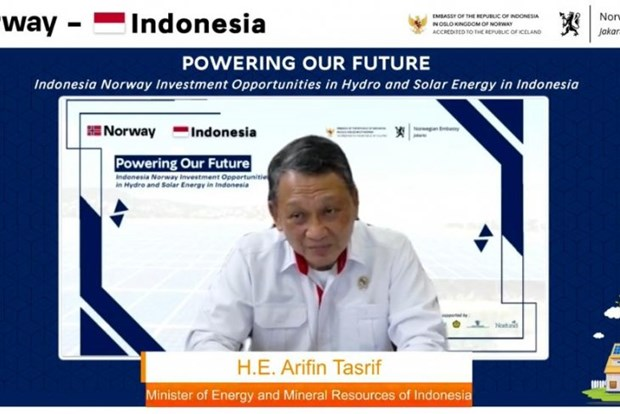 Indonesia outlines strategies for meeting carbon neutral target by 2060 hinh anh 1