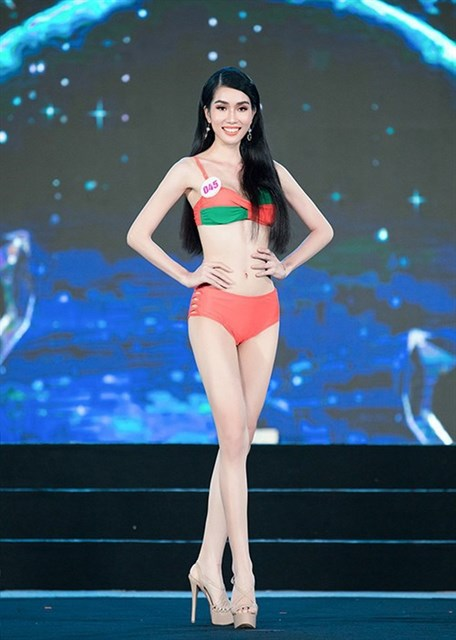Vietnamese beauties to compete at global pageants hinh anh 2
