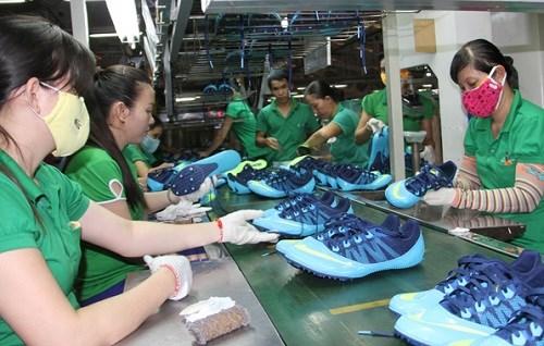 Vietnam footwear exports to EU grow hinh anh 1