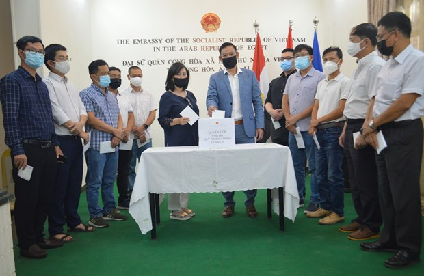 Vietnamese expats in Egypt contribute to vaccine fund hinh anh 1