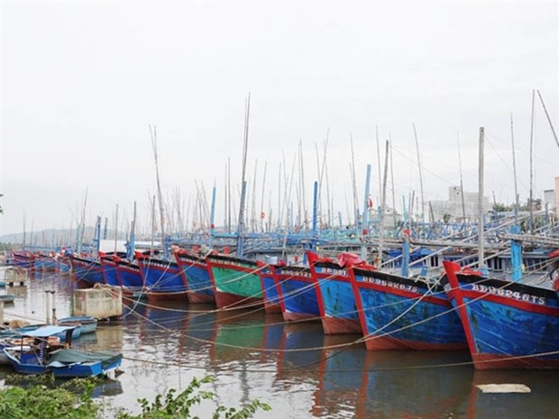 Binh Dinh proposes withdrawing two local ports from planning hinh anh 1