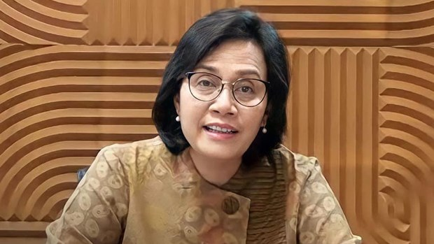 Indonesia needs 247 billion USD to achieve climate change goals hinh anh 1