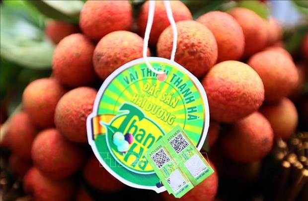 Close to 1 tonne of Vietnamese lychees arrive in France hinh anh 1