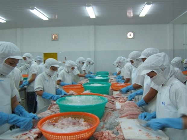 Tra fish exports expected to continue recovering hinh anh 1