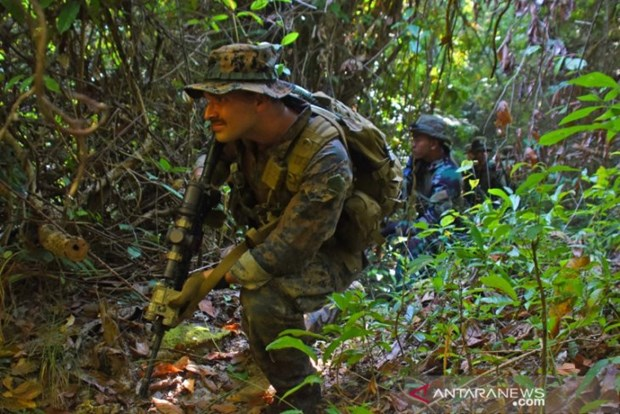 Indonesian, US marine soldiers hold joint drills hinh anh 1