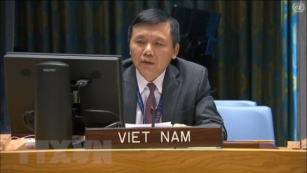 Vietnam calls on Mali to increase national conciliation, implement transition roadmap hinh anh 1