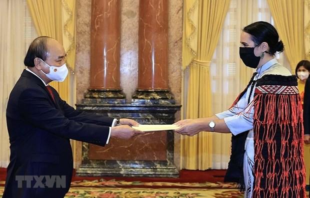 President Nguyen Xuan Phuc hosts foreign ambassadors hinh anh 1