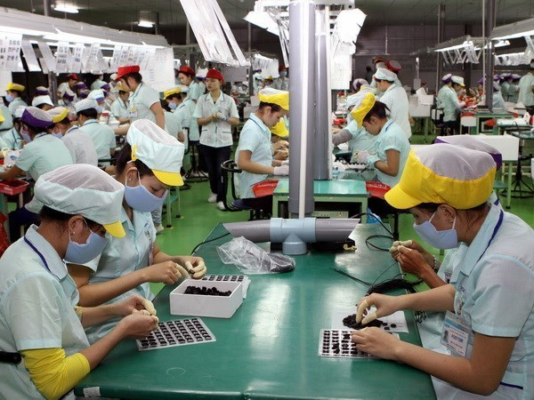 Long An province's six-month industrial production index up 7.5 percent hinh anh 1