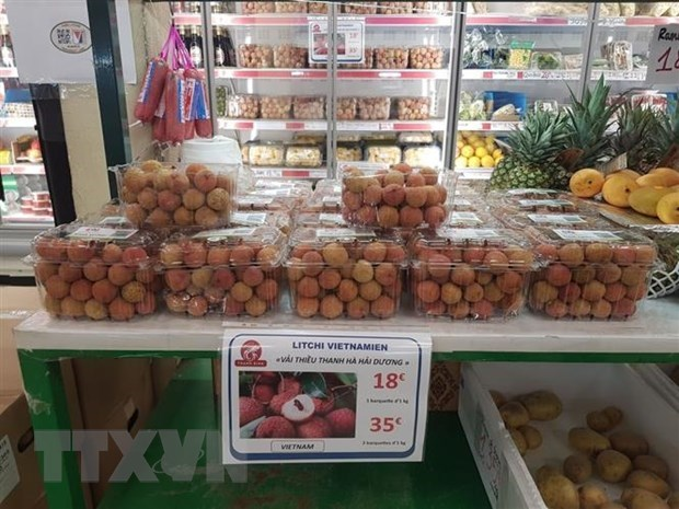 More Vietnamese lychees to be flown to France hinh anh 1