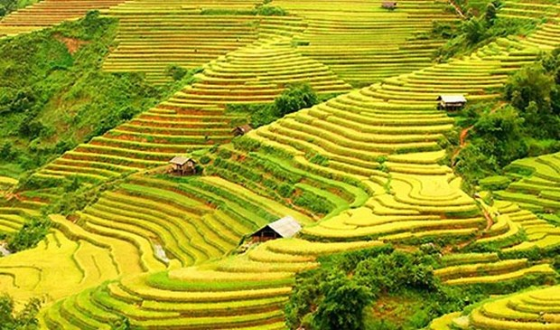 Ha Giang to host culture week highlighting terraced rice fields hinh anh 3