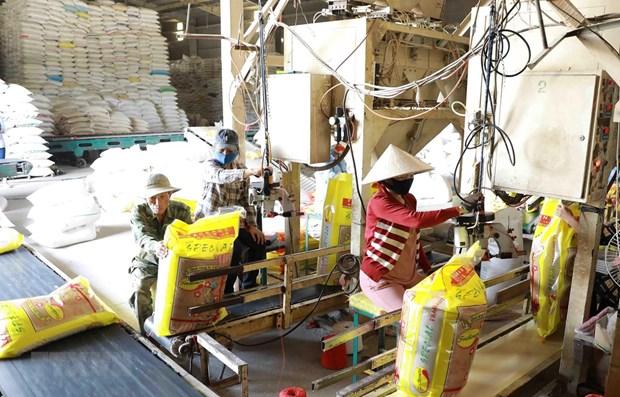 Origin fraud may erode Vietnamese rice's prestige: insiders hinh anh 1