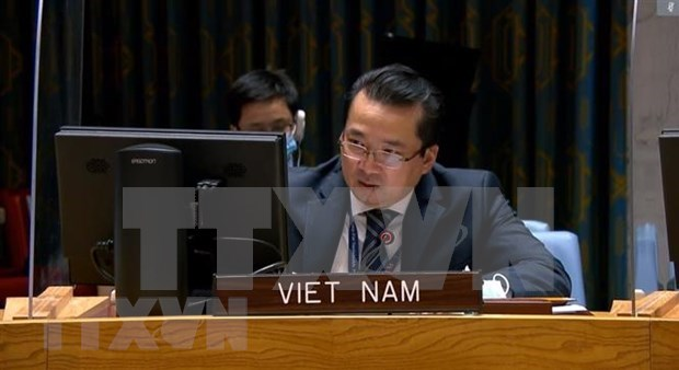 Vietnam supports ending of presence of foreign fighters, mercenaries in Libya hinh anh 1