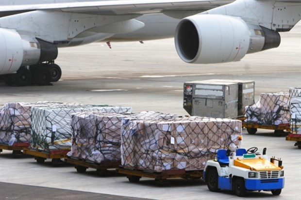 CAAV discusses establishment of VN's first cargo airline hinh anh 1