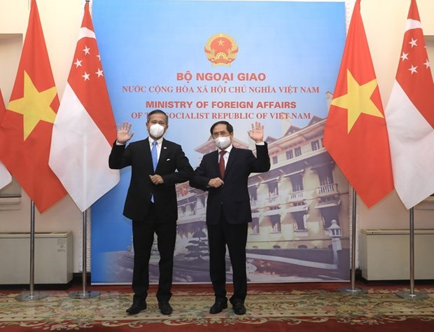 Vietnam, Singapore to work towards bilateral agrement on digital economy hinh anh 1
