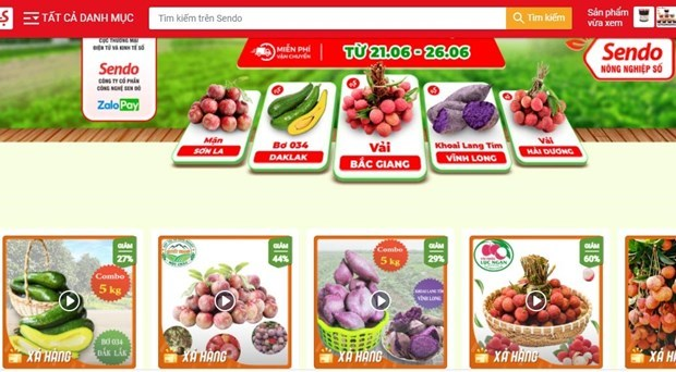 Farmers utilise e-commerce to boost sale of agricultural products hinh anh 1