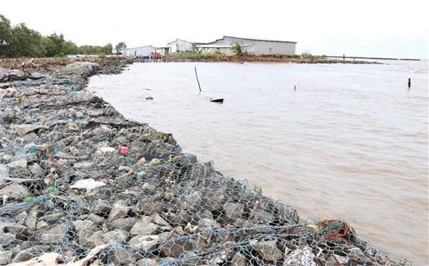 Ca Mau to invest 38.7 million USD to build coastal embankment hinh anh 1