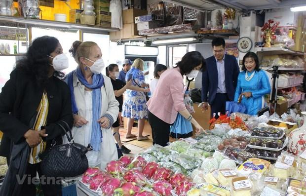 Vietnamese culture impresses international friends in Czech Republic hinh anh 1
