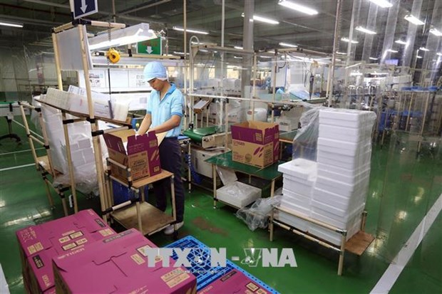 Dong Nai's six-month FDI attraction surpasses yearly target hinh anh 1