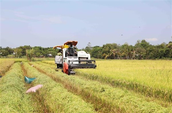 Australian businesses interested in agritech in Vietnam hinh anh 1