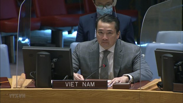 Vietnam calls for enhanced cooperation to address instability in Central African Republic, Syria hinh anh 1