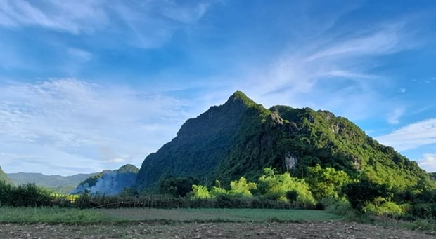 Protected zone established for endangered primates in Quang Binh hinh anh 1