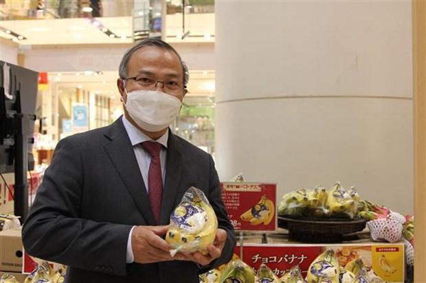 Vietnamese bananas gain a foothold in Japanese market hinh anh 1