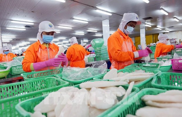 Can Tho records growth of 5.61 percent in H1 hinh anh 1
