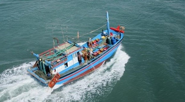 Ben Tre reports reduction in illegal fishing in foreign waters hinh anh 1