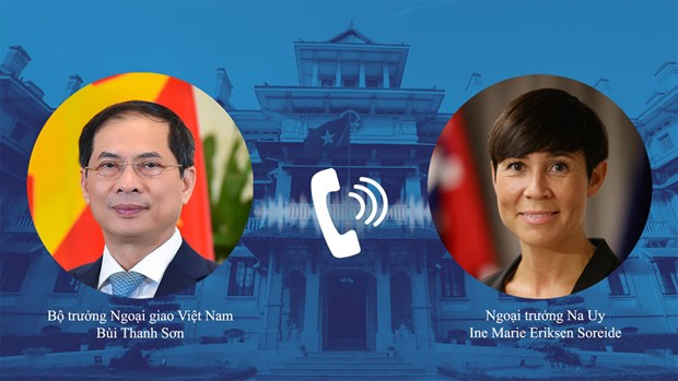 Foreign Minister calls for Norway's investment hinh anh 2