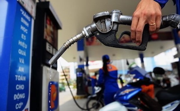 Careful consideration must be given to extending foreign ownership at petrol firms hinh anh 1