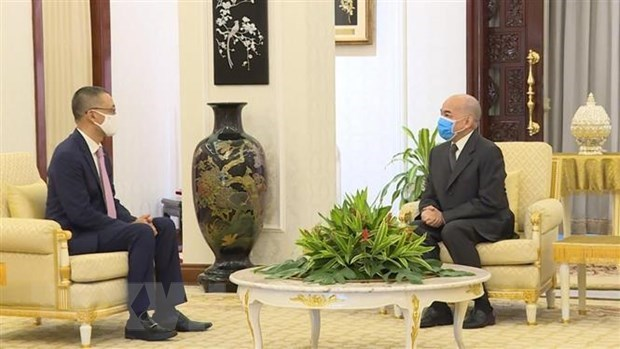 Cambodia appreciates Vietnam's support in difficult times: King hinh anh 1