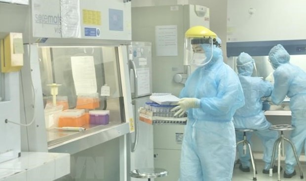 Vietnam has strong, durable institutions for protecting public health: Brookings website hinh anh 1