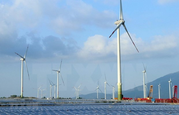 Green hydrogen development associated with offshore wind power, experts say hinh anh 1