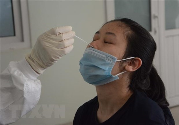 Vietnam records another 356 domestic COVID-19 cases hinh anh 1