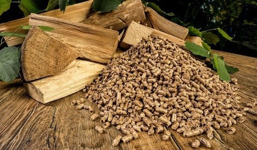 Vietnam now world's second largest fuel pellet exporter hinh anh 1