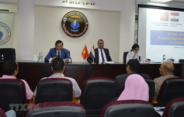 Vietnam, Egypt seek stronger trade, culture, tourism cooperation hinh anh 1