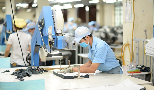 Firms offered recommendations to boost exports to EU hinh anh 1