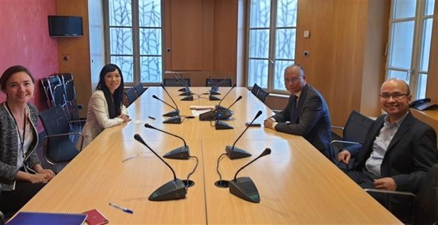 France-Vietnam Parliamentarians' Group affirmed continued support for Vietnam hinh anh 1