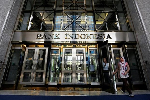 Indonesia lowers economic growth forecast for 2021 hinh anh 1