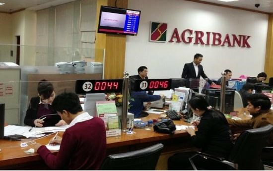 Banks lending big to keep agriculture sector ticking hinh anh 1