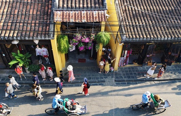 Survey: over 60 percent of Japanese want to visit Vietnam hinh anh 1