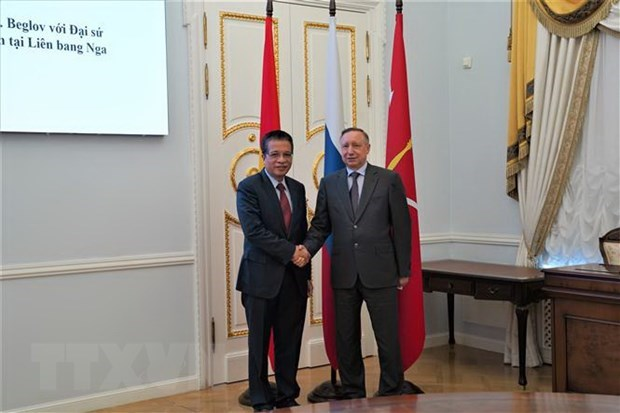 Vietnam seeks stronger cooperation with St. Petersburg hinh anh 1