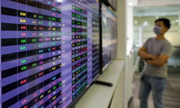 New money into stock market slows down, growth may miss targets hinh anh 1