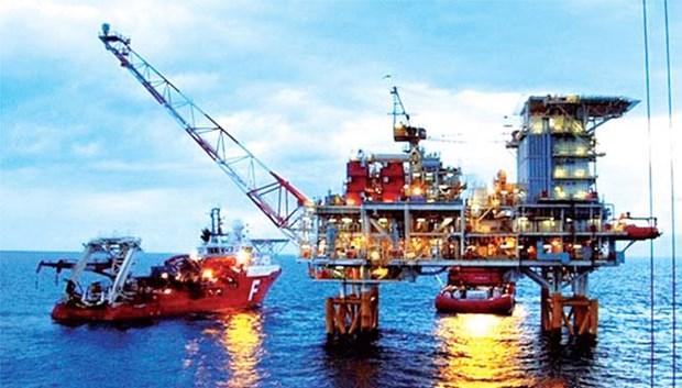 PetroVietnam: H1 pre-tax profit surpasses plan by 165 percent hinh anh 2