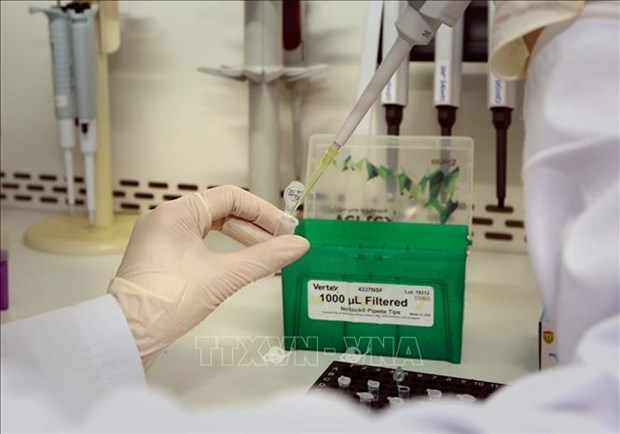 Germany presents more rapid test kits to Vietnam hinh anh 1