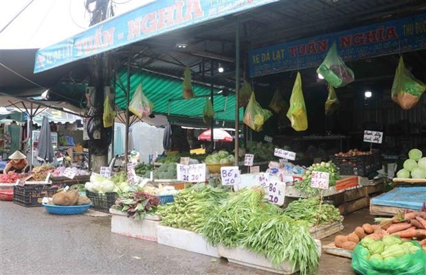 HCM City to reopen wet markets to ease pressure on supermarkets hinh anh 1