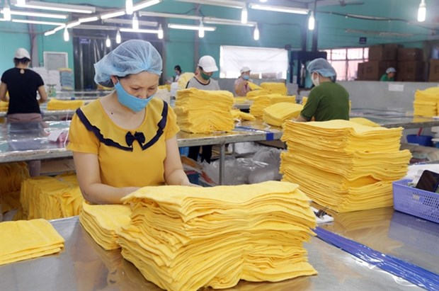 Pandemic highlights need for developing part-supply industries hinh anh 1