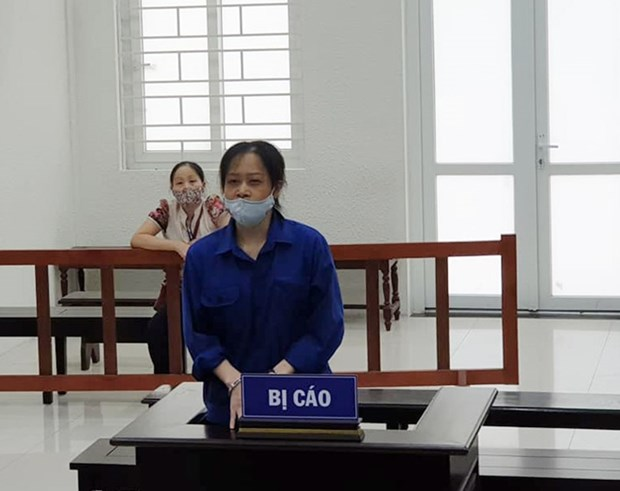 Hanoi woman sentenced to jail for anti-State activities hinh anh 1